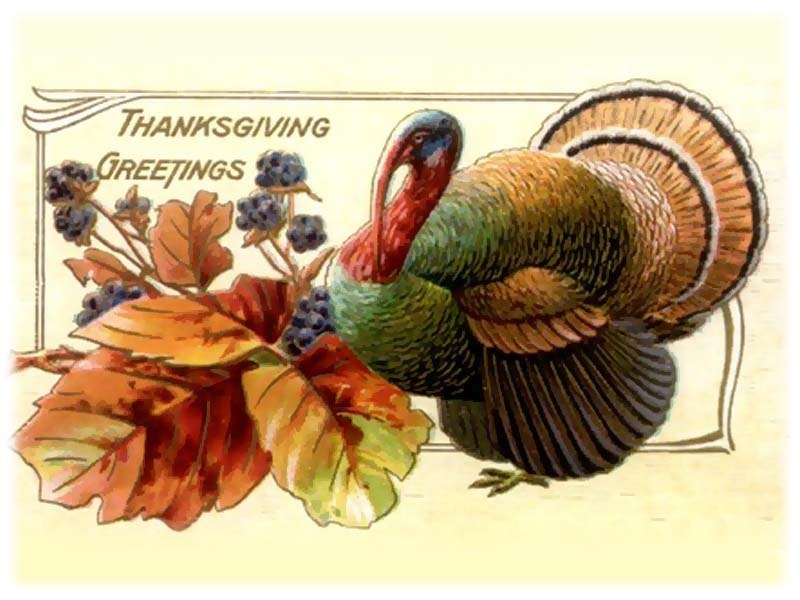 Thanksgiving Wishes from Dr. Jack Singer